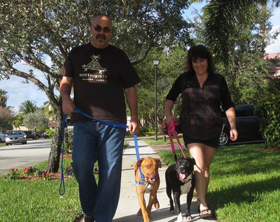 Fechters walking dogs